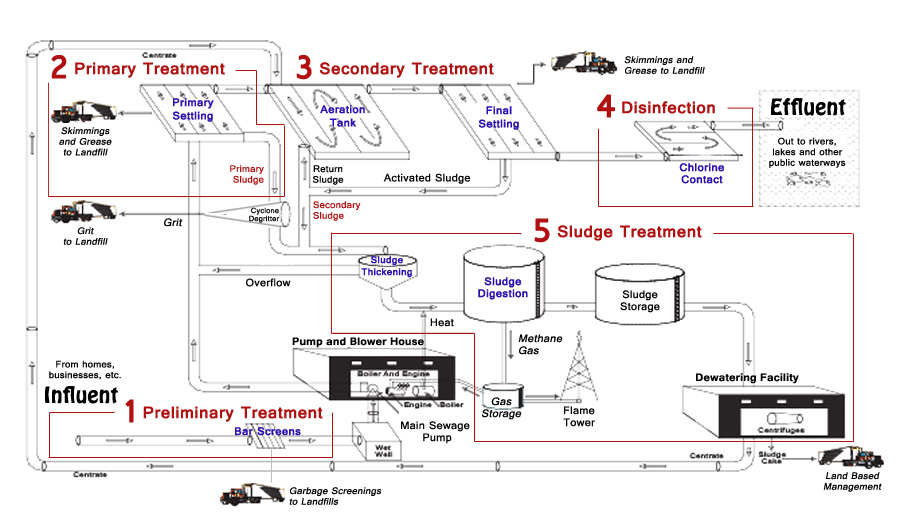 Diagram of Typical Wastewater Treatment Plant